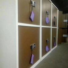 办公指纹锁保密柜 铁皮柜 保密文件柜 重庆厂家直销
