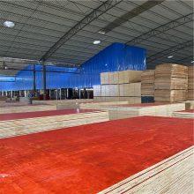 广西建筑木模板专业生产广西建筑木模板