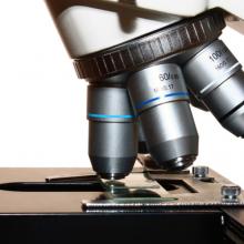 Phaseview3D激光片层扫描系统,3D重构光片显微镜