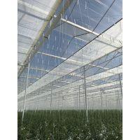 西红柿吊蔓挂钩产品在连栋温室立体栽培中的用法