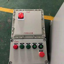 BXM(D)-户外挂式防爆照明开关箱