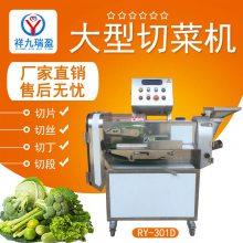祥九瑞盈RYT-301D型双头多功能切菜机