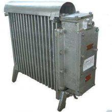 NZHE-2/127矿用防爆电暖器 矿用取暖器可带饮水功能