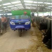 种羊养殖场用喂料车 波尔山羊饲料投喂车 养殖撒料车厂家