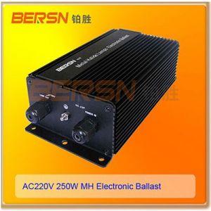 供应专业制造调光高压钠灯电子镇流器250W