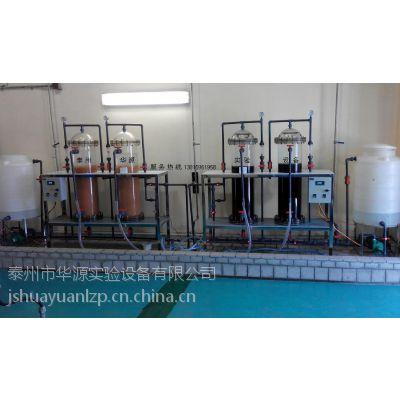 供应泰州华源THYJ-3001-2氢电导树脂动态再生装置