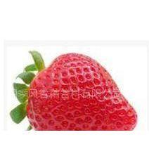 供应草莓香精