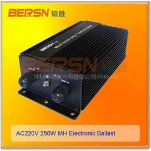 供应金卤灯电子镇流器250W,调光电子镇流器,节能电子镇流器专业制造商