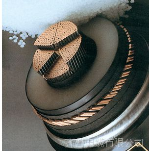 耐克森阳谷电缆阳谷日辉煤矿用聚氯乙烯绝缘阻燃电力电缆
