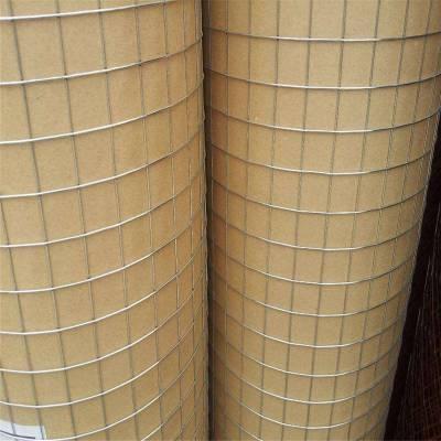 电焊网机器 批发电焊网 镀锌苗床网