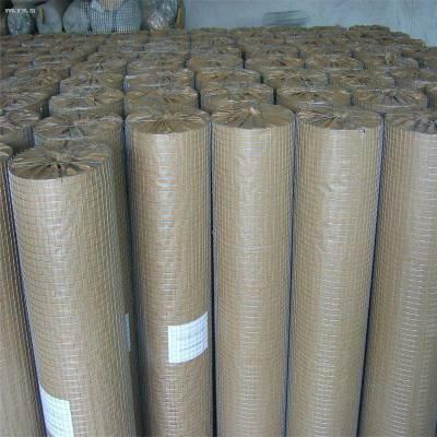 镀锌电焊网销量 浸塑电焊网市场 围栏网图片