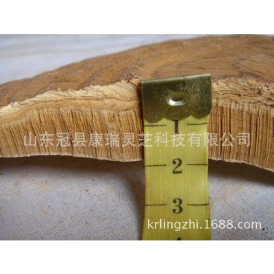 1公斤的一级野生灵芝需要长多少年 康瑞灵芝