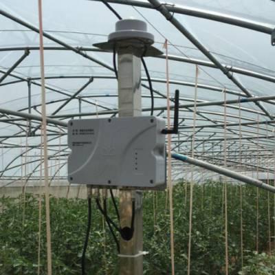 连体温室大棚工程-连体温室大棚-兵峰,物联网智能农业(查看)