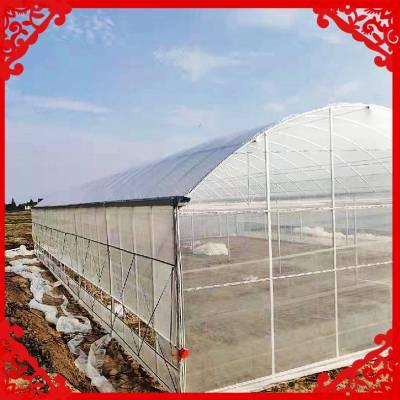 钢架温室大棚定制 组装双膜大棚骨架现场施工 单体大棚设计安装