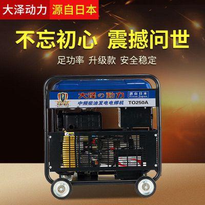 大泽动力250A柴油发电电焊机