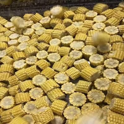 冻玉米切段机 火锅店玉米段加工设备 速冻玉米块切割机