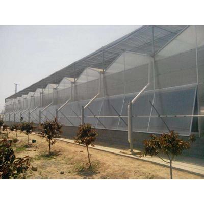 山东拱顶pc板温室造价 智能温室大棚安装 阳光板温室图片