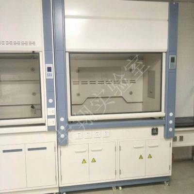 上海定制通风柜生产设计 服务为先 江苏荣翔实验室设备供应