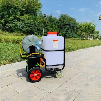 批发农用蔬菜打药机 12V电瓶式推车打药机 小麦地杀虫喷雾机