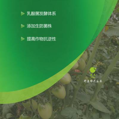 惠禾 种植 肥料用 em菌 抑制病害 促进生根 提高植物品质