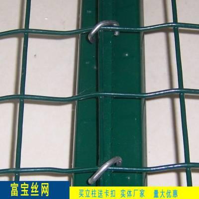 绿色铁丝网 焊接涂塑荷兰网 30米网长 果园围栏网 焊接牢固