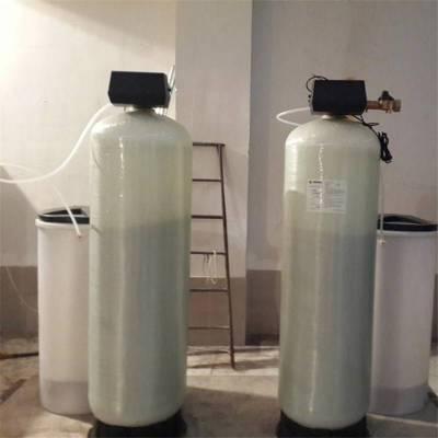 弗莱克阀头软水器 保山工厂除水垢软化水设备 全自动工业软水器