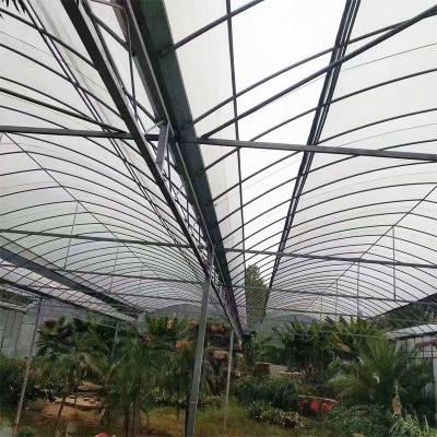 大棚管贵州玻璃温室大棚多少钱一平方
