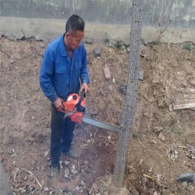 苗木断根挖树机 树木移栽机生产厂家