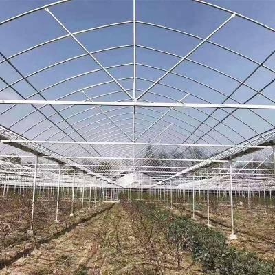 大棚管合肥长丰养殖大棚厂家咨询
