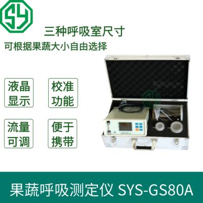 红外果蔬呼吸仪SYS-GS80A