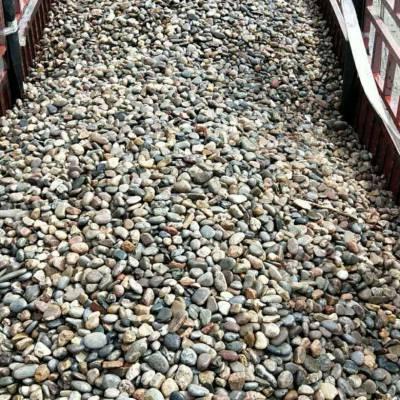 潍坊鹅卵石滤料大型鹅卵石草坪点缀/水处理鹅卵石滤料电话询价格