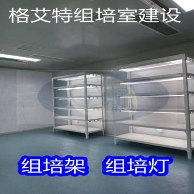 供应格艾特组培设备 组培实验室建设 组培架
