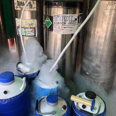 光明新区液氮配送 公明液氮充装 高纯氮气氧气供应