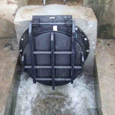 优质dn0.8*0.8米铸铁拍门-福建节能拍门价格
