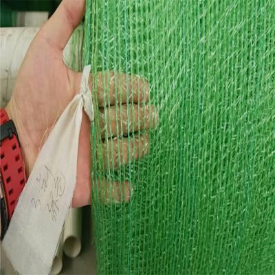盖工地扬尘网 绿色盖土网 黑色盖土网价格