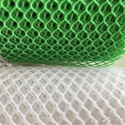 仕邦 鸡雏养殖网 养鸭塑料平网厂家 大量现货
