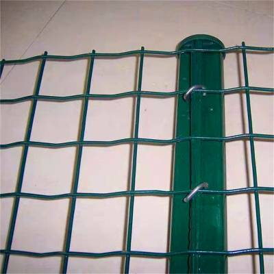 东北森林防护铁丝网 养殖用网防腐不易生锈 荷兰网供应商