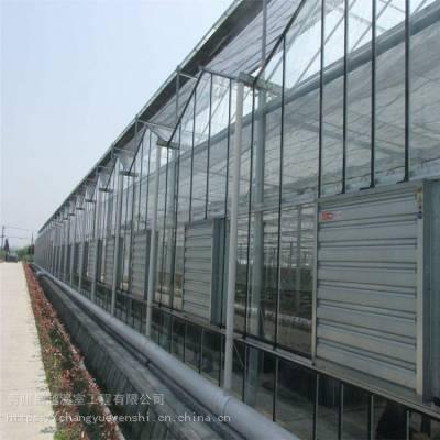 蔬菜花卉连栋薄膜温室 草莓棚安装图纸 高度4米定高4.9米