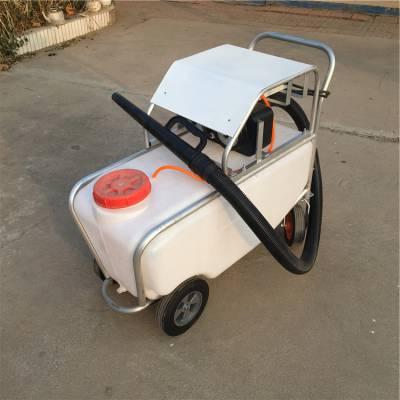 养殖场灭菌消毒喷雾机 手推75升远程风雾机 高压电动弥雾机